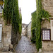 Senlis ©nz_willowherb