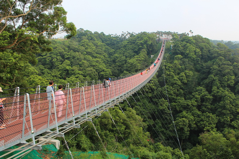 南投猴探井天空之橋1