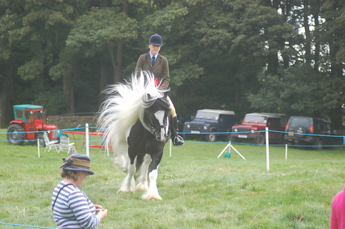 Bowes Agricultural Show Sept 12 (18)