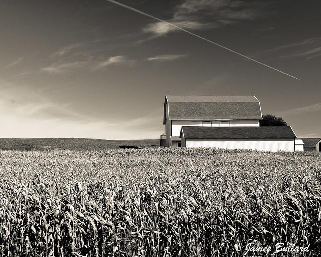 Allegan Farm