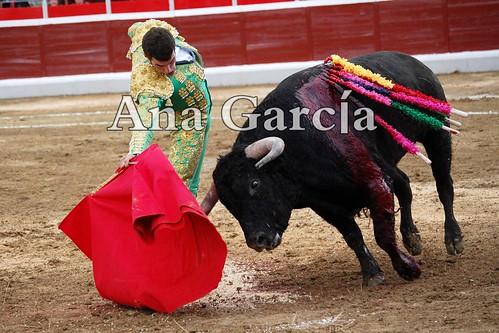 Fernando14