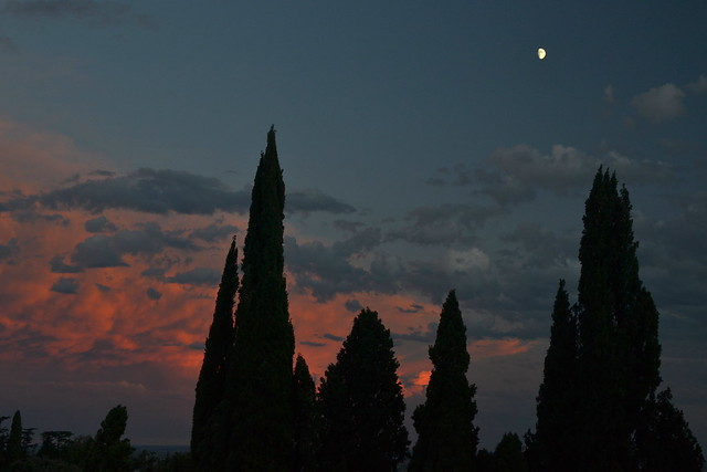 Sunset with cypresses and half moon