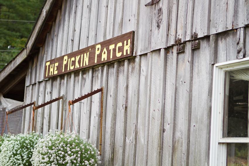 pickin 3