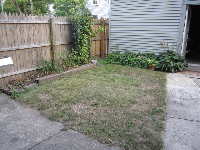 The Backyard Before