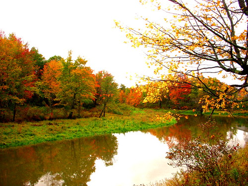 autumn trees red orange green nature yellow river landscape seasons maine newengland changing nikoncoolpixs51 nikons51
