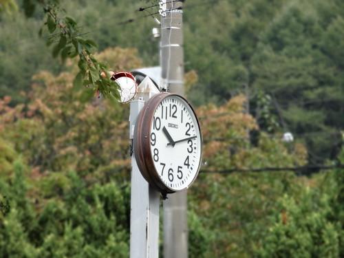 時計(背景ぼかし)