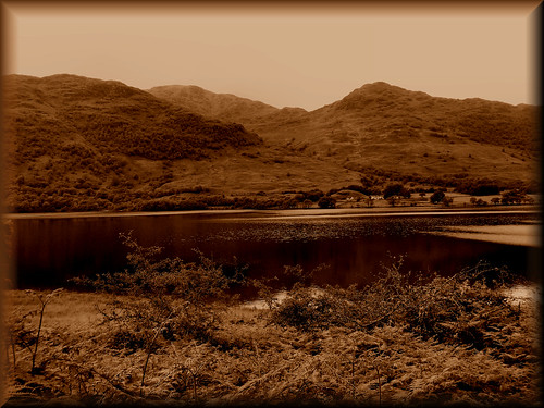 A touch of sepia.