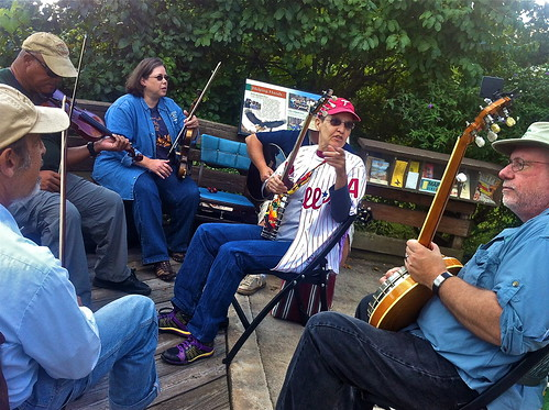 watching hawks playing bluegrass