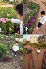 アトレ恵比寿屋上にて (2012/10/8)