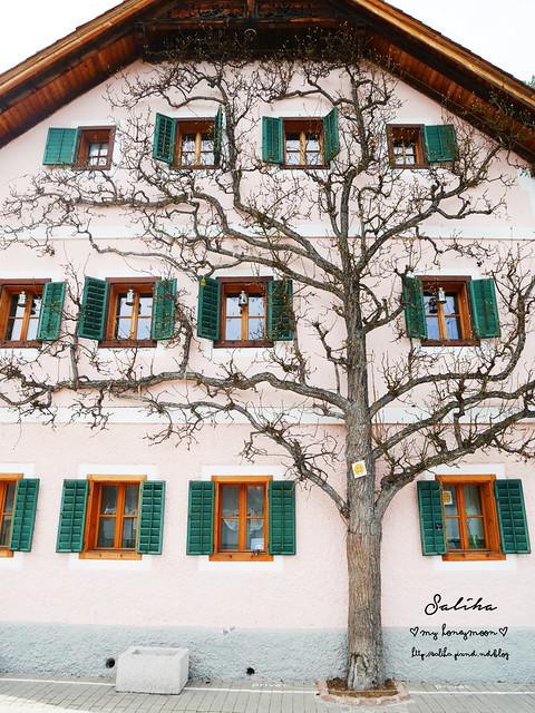 奧地利哈爾施塔特Hallstatt, Austria (16)