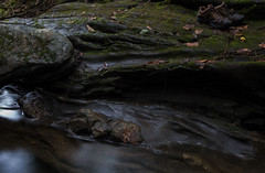 Boudin. Devonian Gile Mountain Formation, Leyden, MA