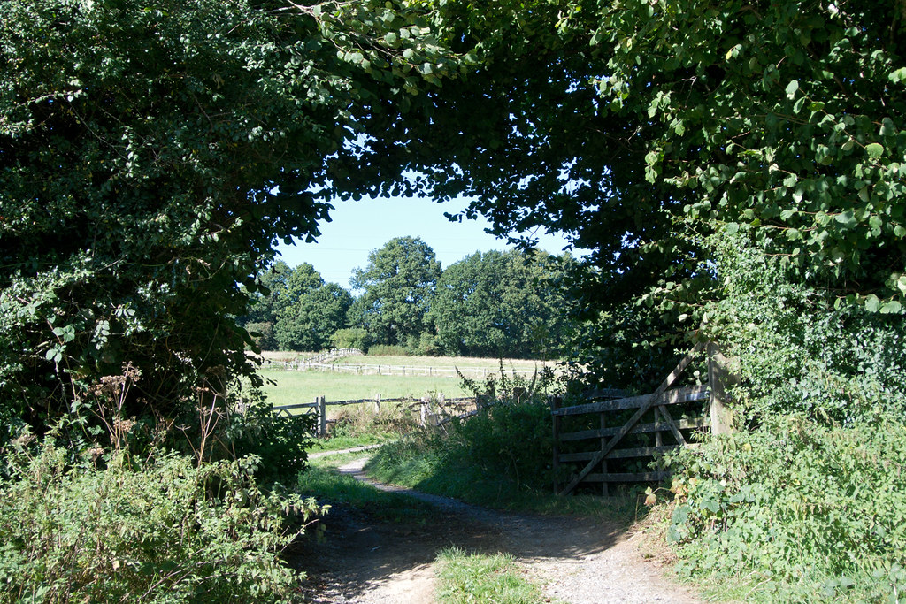 Country Lane East Grinstead Circular