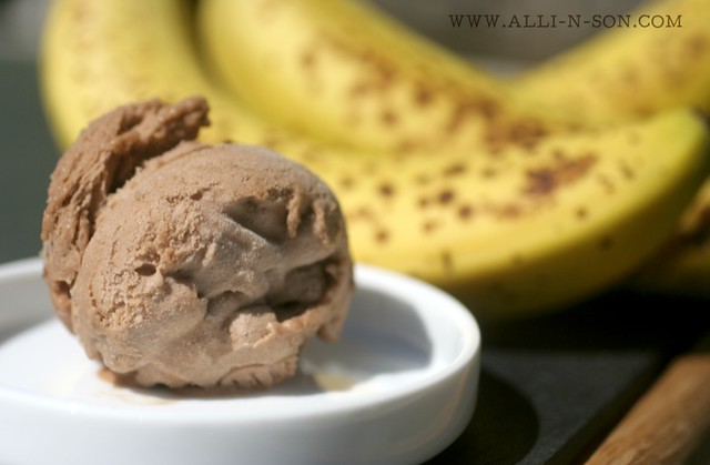 Two Ingredient Banana and Nutella Ice Cream