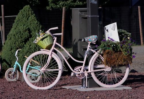 Bikes in Bly