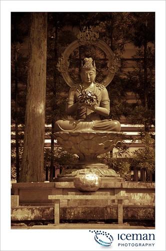 Myoshin-ji Temple 400