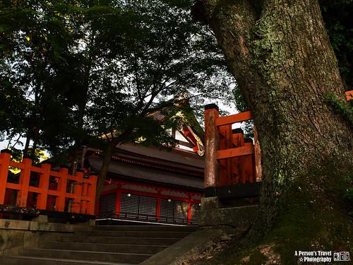 2012_Summer_Kansai_Japan_Day6-120