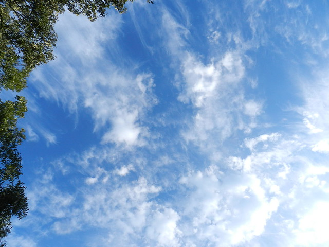 skywatfrDSCN6265
