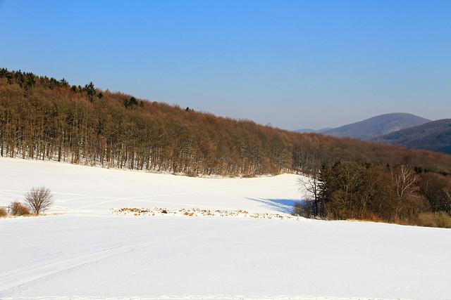 Winter landscape in Lower Austria.