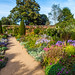 A beautiful September display in the walled garden of Mottisfont Abbey in Hampshire