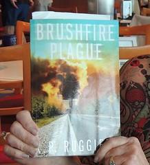 brushfire2