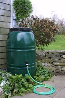 rain barrel (by: BNRiverKeeper.org, via Little Bits of Green Chicago)