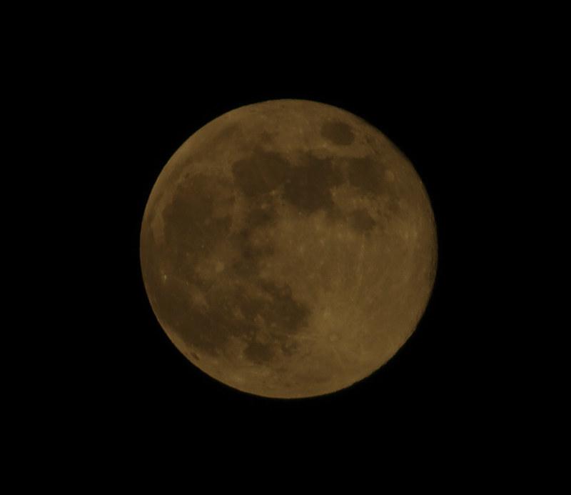 月圓之夜-習拍
