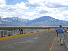 Gilbert on the Rio Grande Gorge Bridge