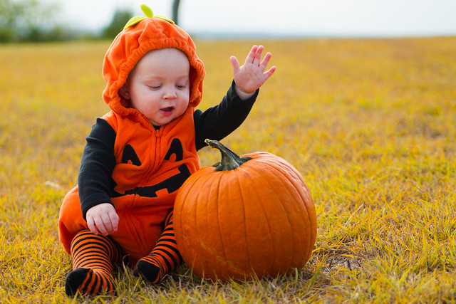 Baby Pumpkin-015