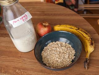 Oatmeal components
