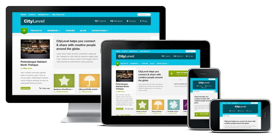 WordPress and BuddyPress theme