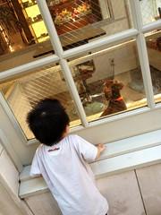 犬を見る (2012/10/7)