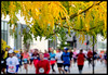 Hey, it's fall! Hey, there's a marathon going on! by Andy Marfia