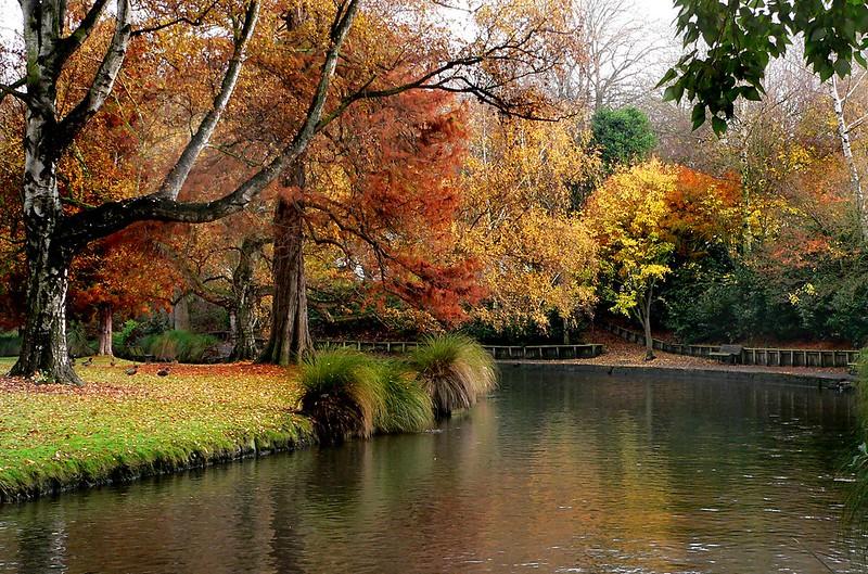 Hagley Park New Zealand.