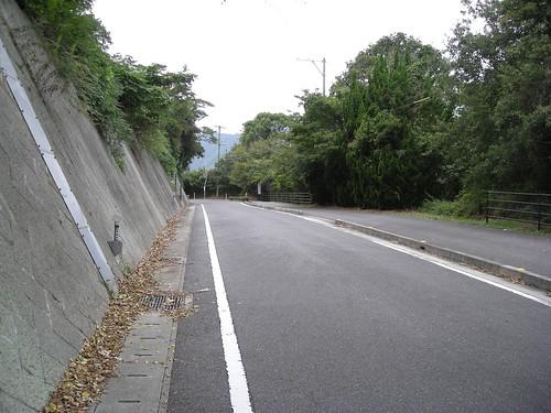 走りやすい自転車道