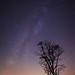 Milky Way in Oak Openings by Luke Hertzfeld