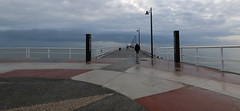 on and around shorncliffe pier, july 2016 (25)
