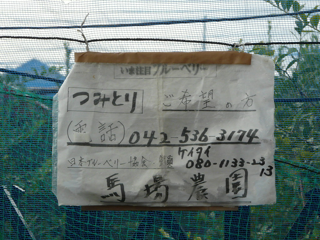 Contact details for Tachikawa blueberry picking.