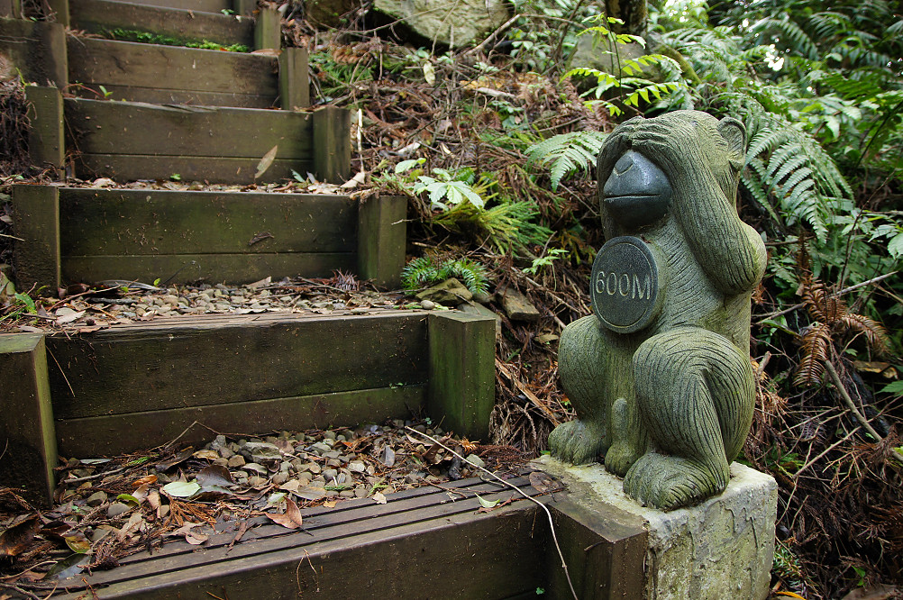 猴洞步道-25