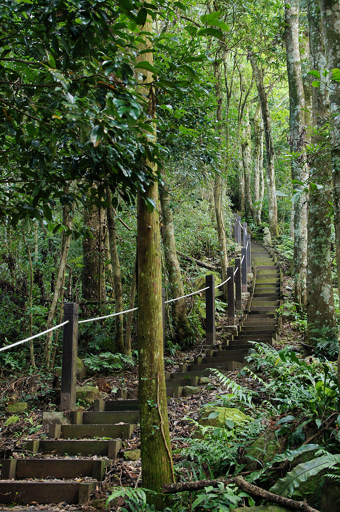猴洞步道-21