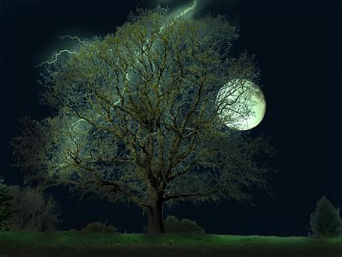 無料写真素材, グラフィック, フォトレタッチ, 樹木, 雷・落雷・稲妻, 月