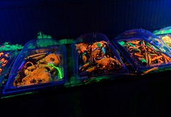Radioactive Lobsters at HHN 22