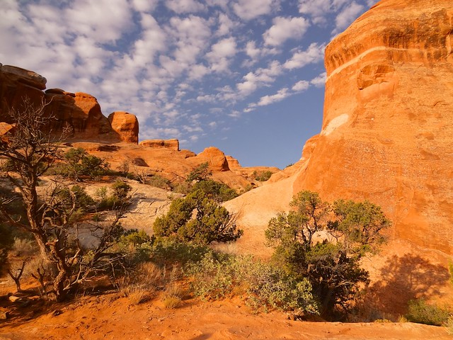 red rocks of arches