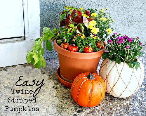 Twine Striped Pumpkins by The Silly Pearl