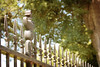 """""""HaPPy FeNcE FriDay"""" by tammy_grooms"""