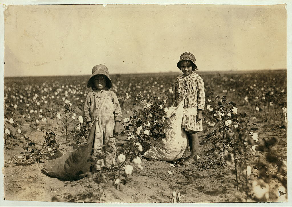 Jewel and Harold Walker, 6 and 5 years old, pick 20 to 25 pounds of cotton a day. Location: Comanche County, Oklahoma
