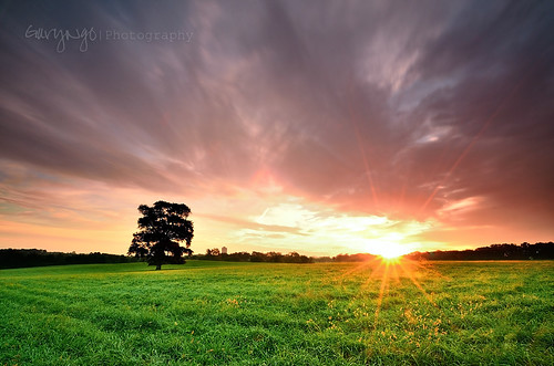 longexposure sky usa tree field grass clouds sunrise nikon maryland flare d7000