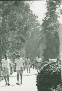 Students walking on the sidewalk of College Avenue circa 1969