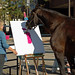 horse with a paintbrush in Dixon, Illinois - trying to make the town feel better by ihynz7