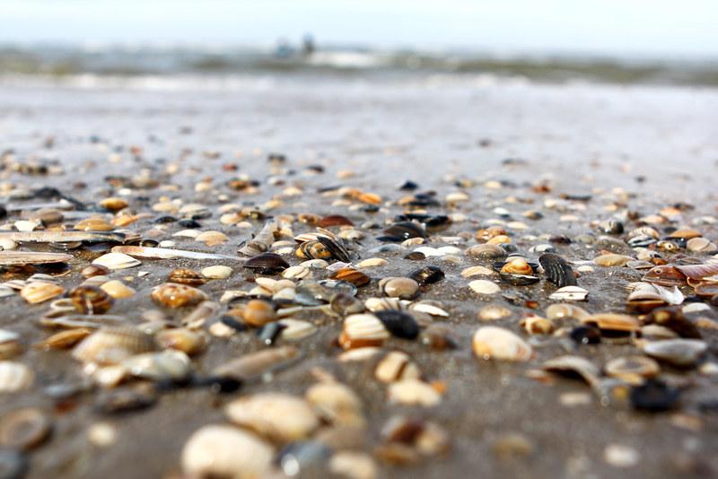 Zandvoort_8548