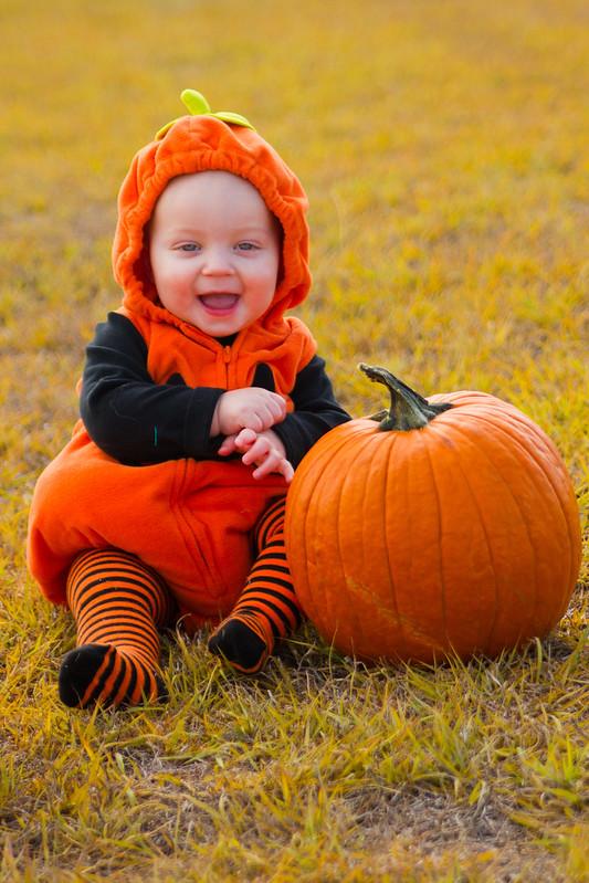 Baby Pumpkin-014